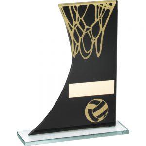 netball award